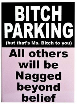 Bitch Parking Tin Sign