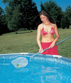 Pool vacuum and skimmer maintenance kit